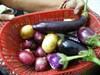 Fresh_veg